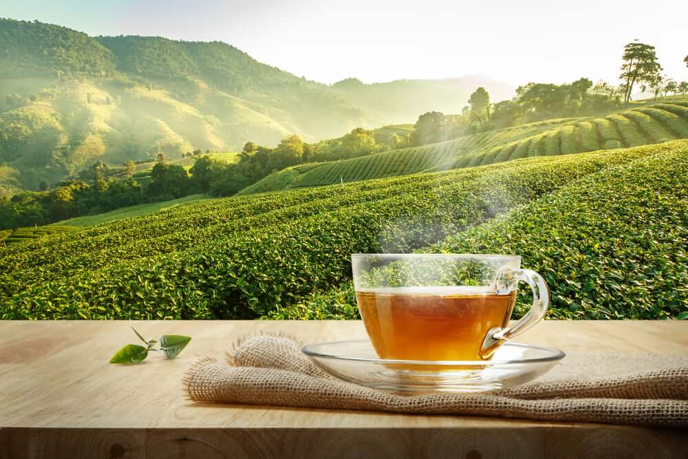 Cara buat bisnes online | Rahsia Bagaimana seller ini menjana RM2k++ hanya jual teh ke luar negara
